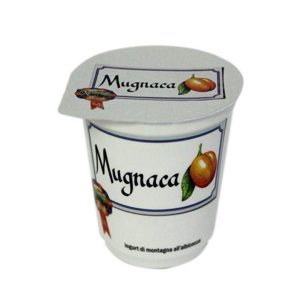 Yogurt Di Montagna All Albicocca Mugnaca 180g Nostrani Del Ticino Agroval