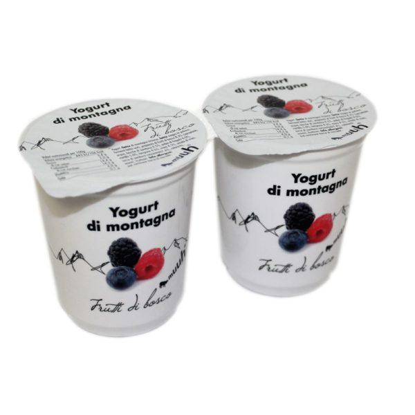 Yogurt Di Montagna Frutti Di Bosco 2x180g Muuh Agroval