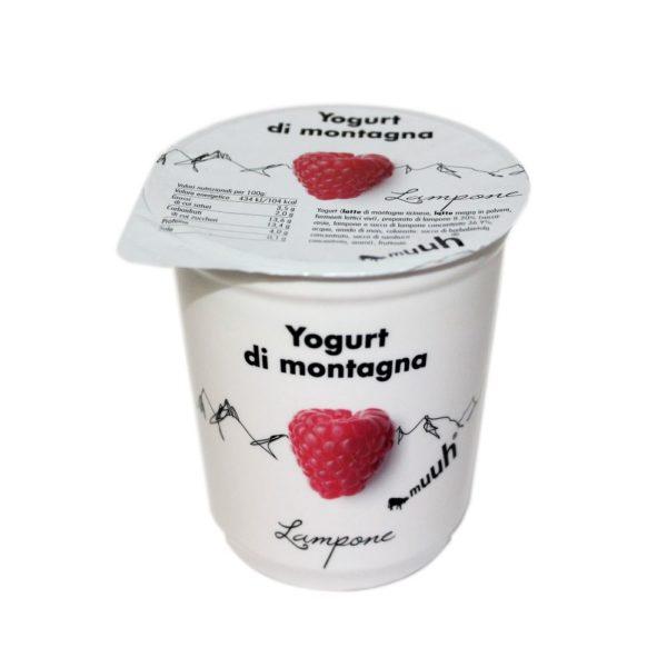 Yogurt Di Montagna Lampone 180g Muuh Agroval