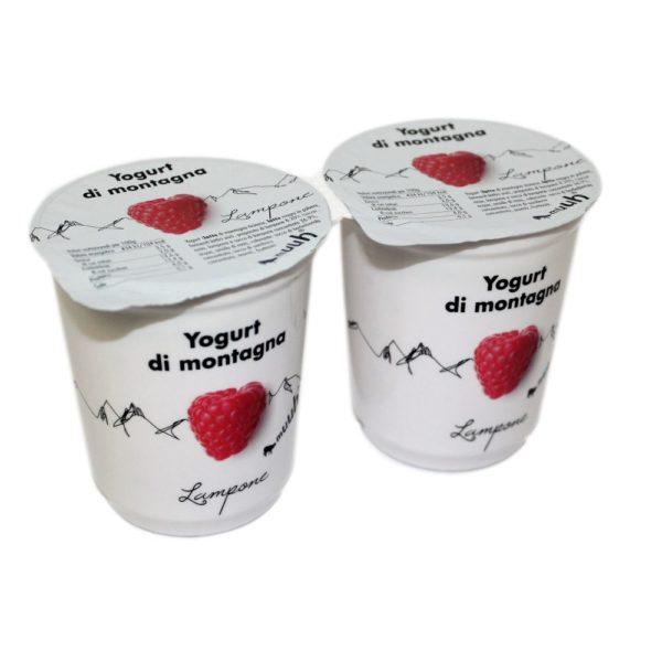 Yogurt Di Montagna Lampone 2x180g Muuh Agroval
