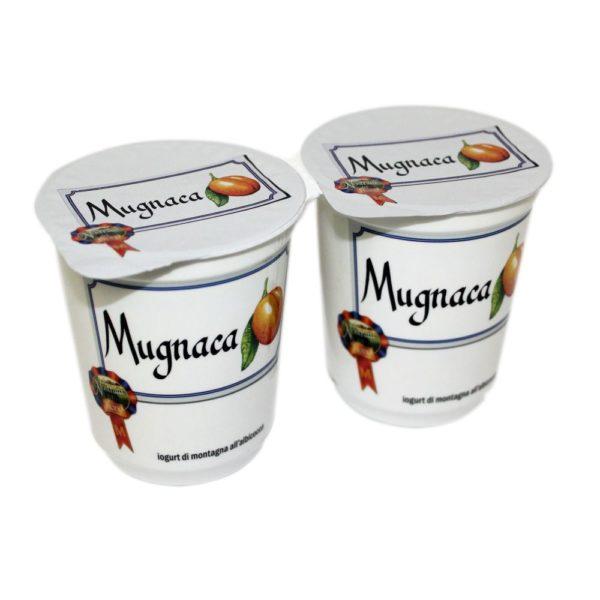 Yogurt Di Montagna All Albicocca Mugnaca 2x180g Nostrani Del Ticino Agroval
