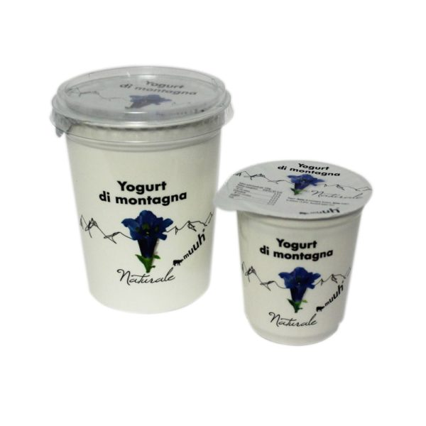 Yogurt Di Montagna Naturale 180g 500g Muuh Agroval